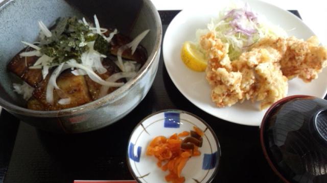 茄子ステーキ&鶏唐揚げ